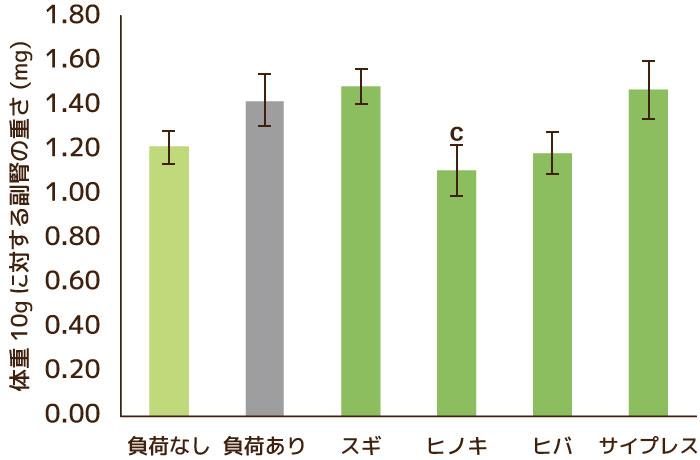 (1)臓器重量測定